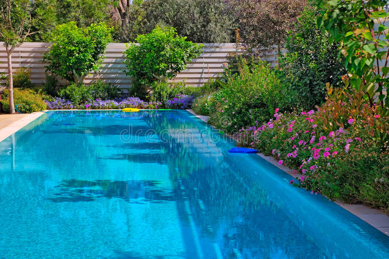 Swimming pool with flowers stock images