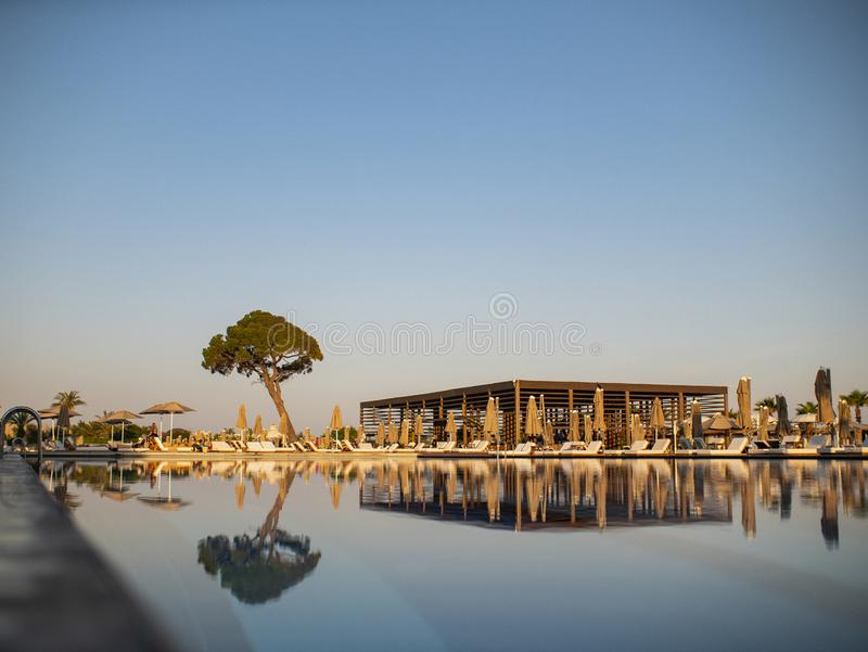 Swimming pool in a luxury resort or hotel overlooking a large tree and the beach under a blue sky stock image