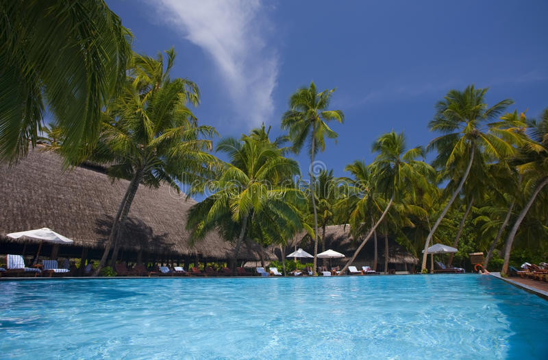 Swimming pool in Maledives. Blue swimming pool on the island of Maledives stock photo