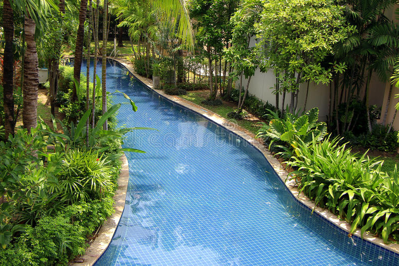 Swimming pool with nature stock photo