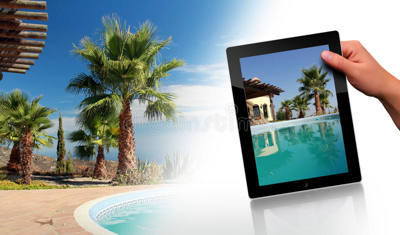 Swimming Pool, Palm and tablet pc royalty free stock image