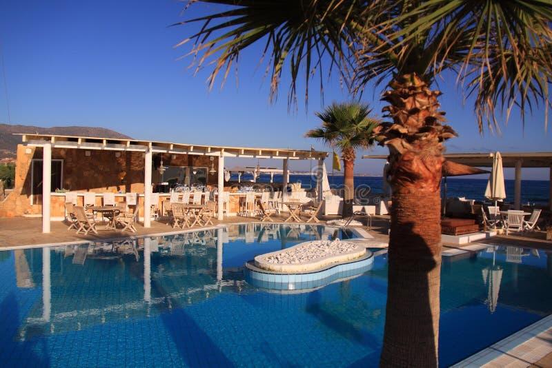Swimming pool, palm tree luxury resort royalty free stock photography