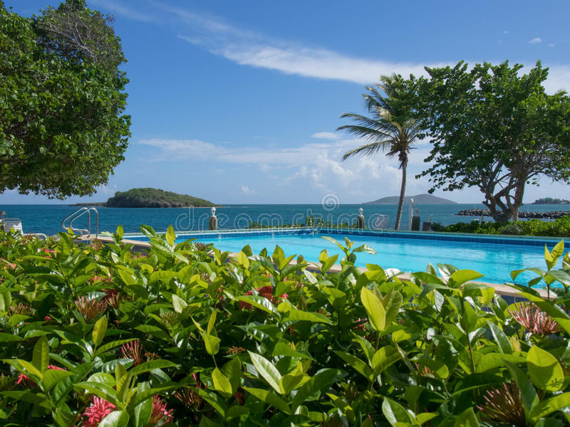 Swimming Pool Surrounded. By flowers and the Caribbean Sea with Green Cay and Buck Island in the background. St Coix, U.S. Virgin island stock photos