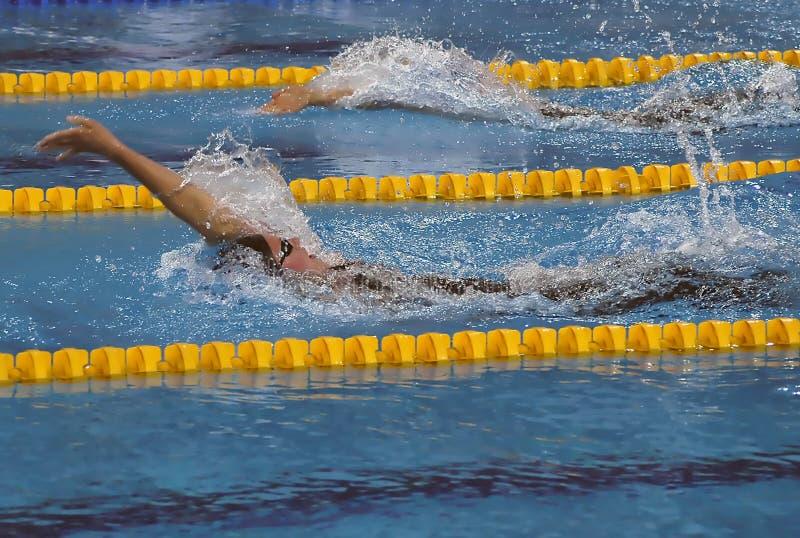 Swimming race-1 royalty free stock photo
