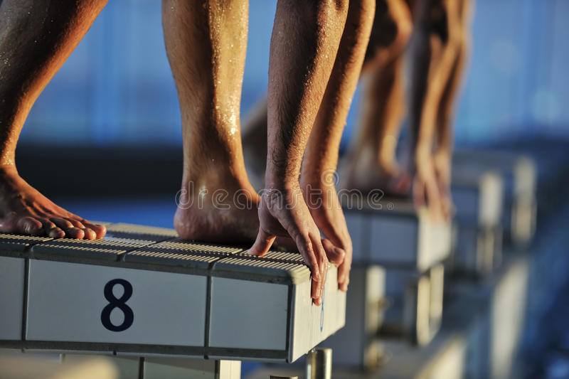 Swimming start. Start position race concept with fit swimmer on swimming pool stock photo