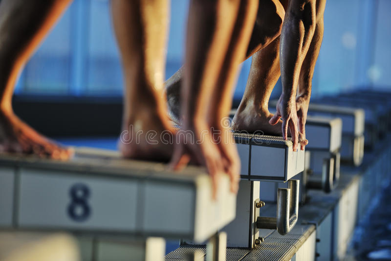 Swimming start. Start position race concept with fit swimmer on swimming pool stock image
