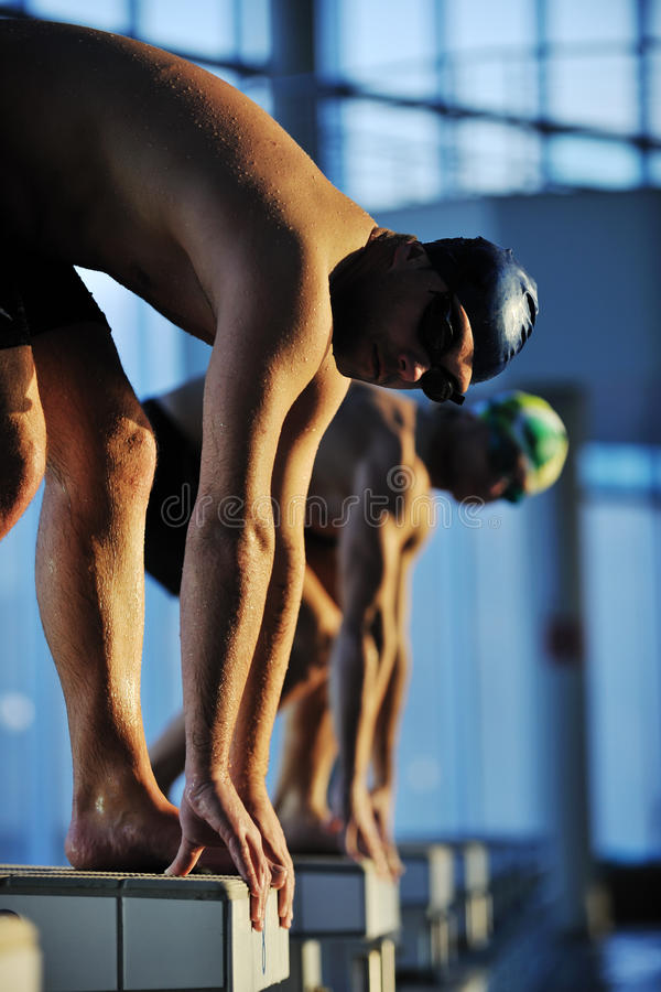 Swimming start. Start position race concept with fit swimmer on swimming pool stock photos