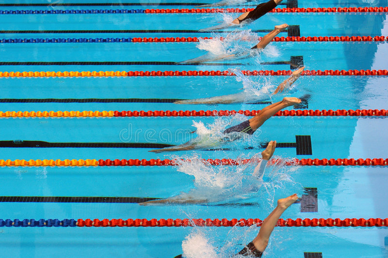 Swimming start 20. Swimmers dive into the water at the start of a race stock photos