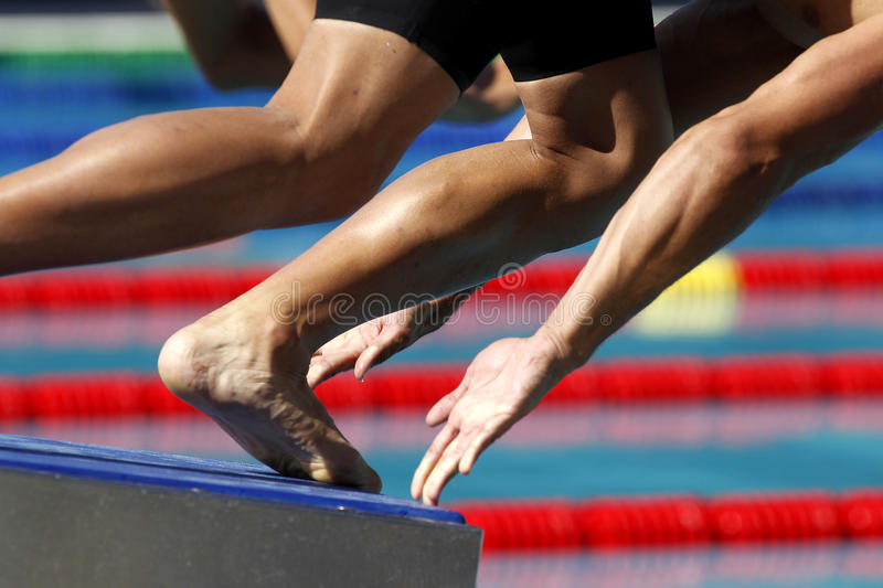 Swimming start. Male swimmer diving into the water in a swim event royalty free stock photo