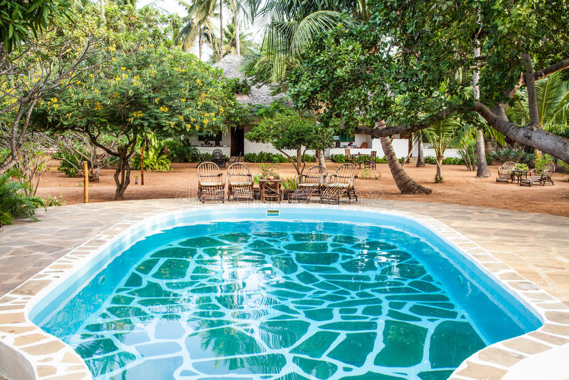 Swimmingpool im afrikanischen Garten stockfotos