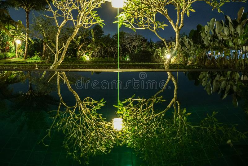 Swimmingpool im Dschungel Reflexion Balis Indonesien von B?umen auf Unendlichkeitspool stockbilder