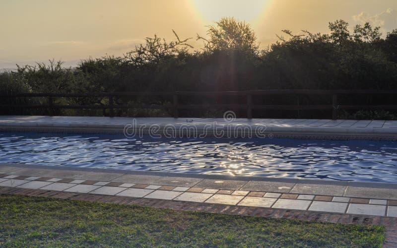 Swimmingpool im Sonnenaufgang stockfotos