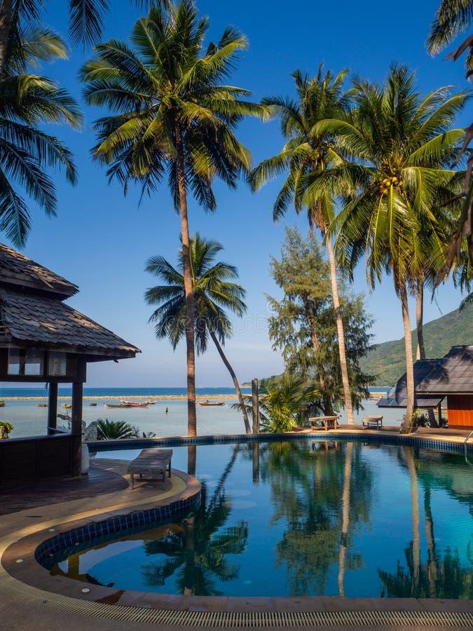 Swimmingpool mit Palmen lizenzfreie stockfotos