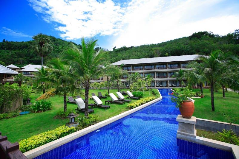 Swimmingpool, Sonnenruhesessel nahe bei dem Garten und Gebäude stockbild