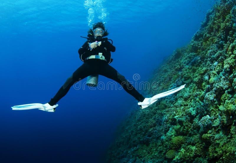 Swimms fêmeas do mergulhador de mergulhador para trás fotografia de stock royalty free