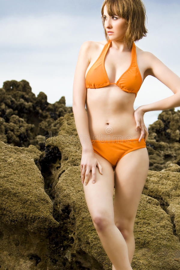 Download Swimwear Girl Royalty Free Stock Image - Image: 14841226