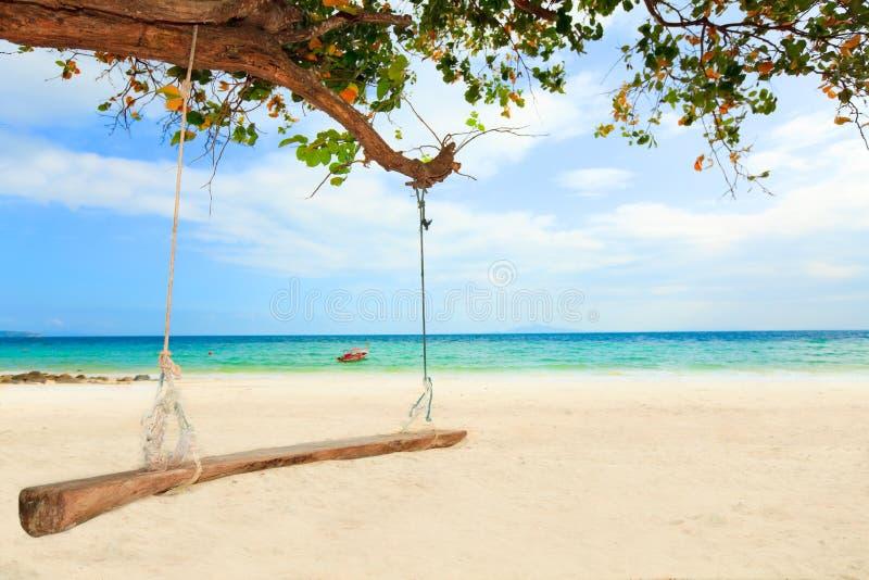 Download Swing stock photo. Image of maldives, bahamas, coastline - 12724690