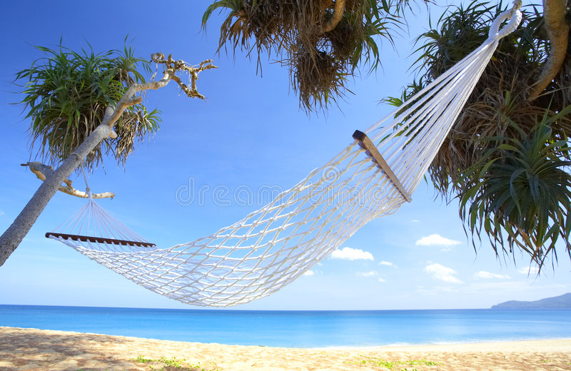 Swing and bliss. View of nice white hammock hanging between two palms royalty free stock photography