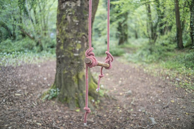 A Swing in a Forest stock photo