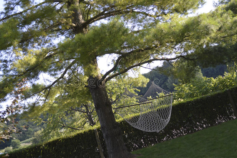Swing stock image