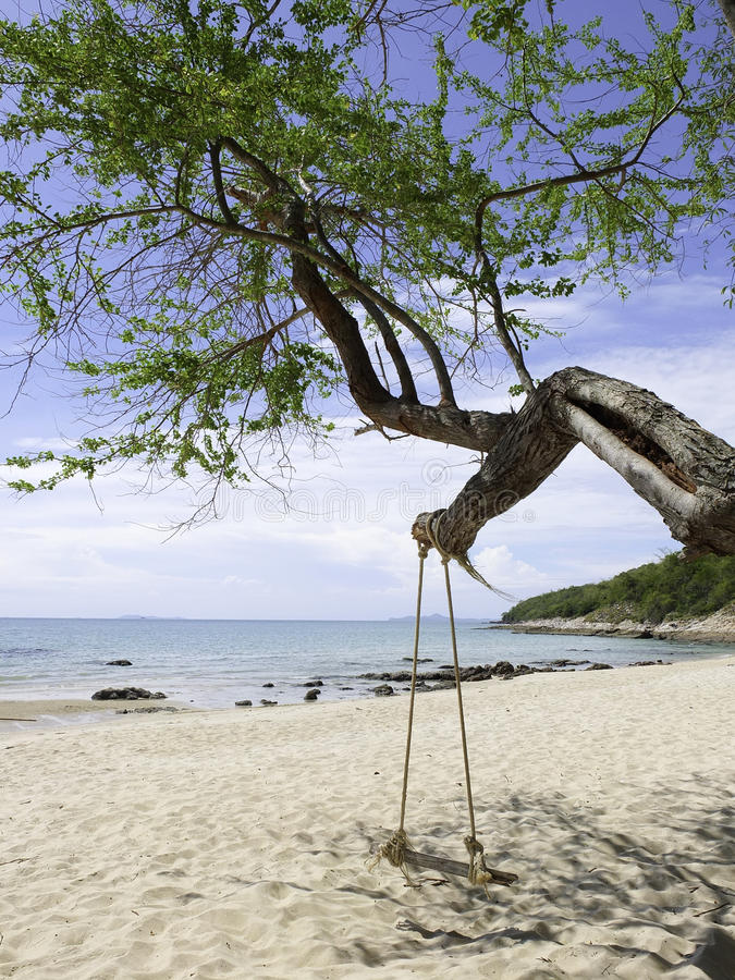 Swing på naturbakgrunden arkivfoto