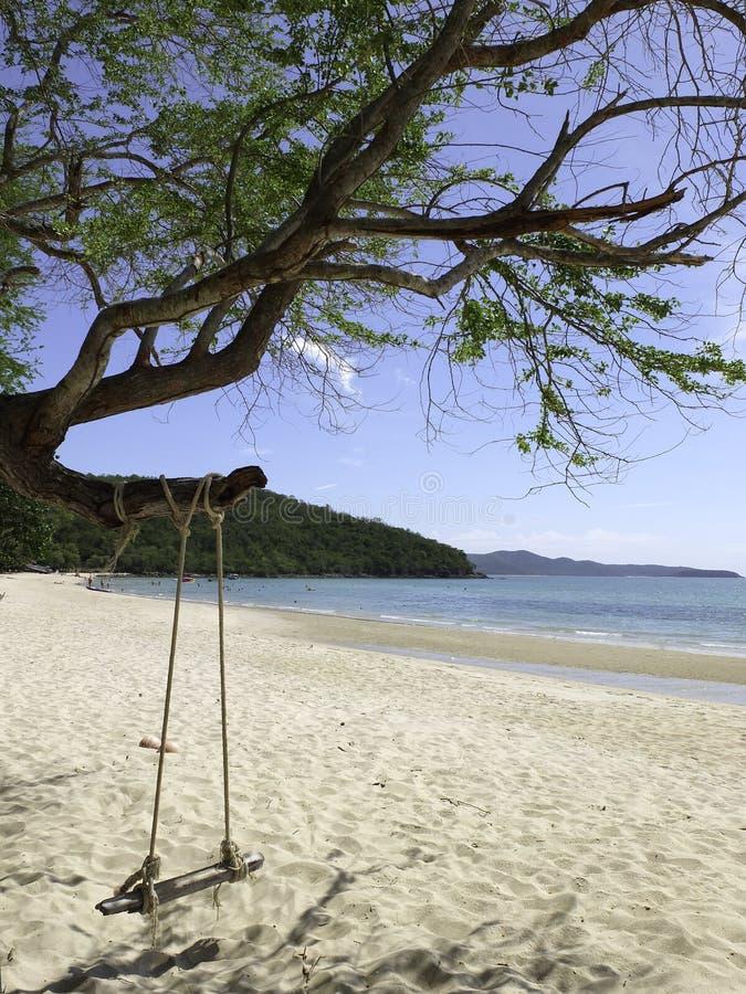 Swing på naturbakgrunden royaltyfri fotografi