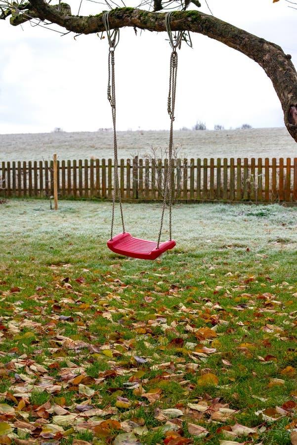 Swing på träd i trädgård med höstledighet royaltyfria foton