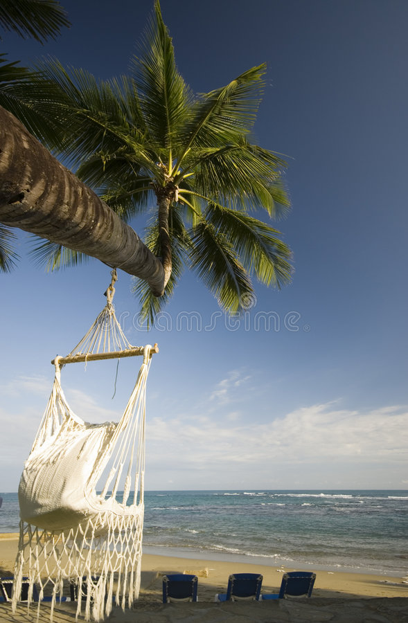 Swing on palm tree royalty free stock photos