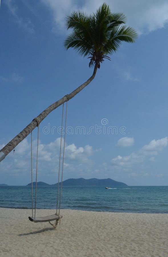 Swing on the palm tree royalty free stock photography