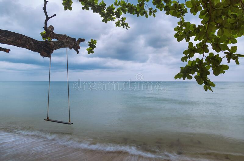 Swing under the trees on the beach at evening stock photos
