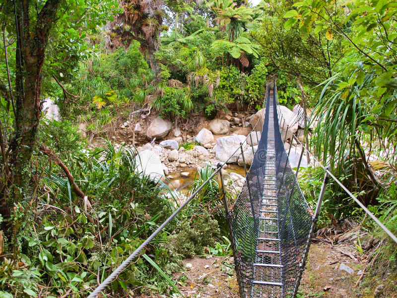 Swingbridge On The Heaphy Track Royalty Free Stock Images