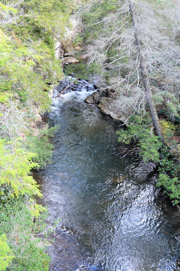 The swinging bridge provides an aerial platform with which to take photos of the beauty below. The Falls Creek Fall State Park in Tennessee is a great place to stock photography