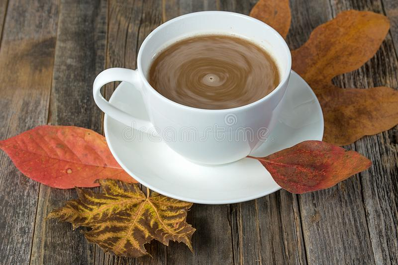 Swirling cream in coffee with fall leaves royalty free stock image