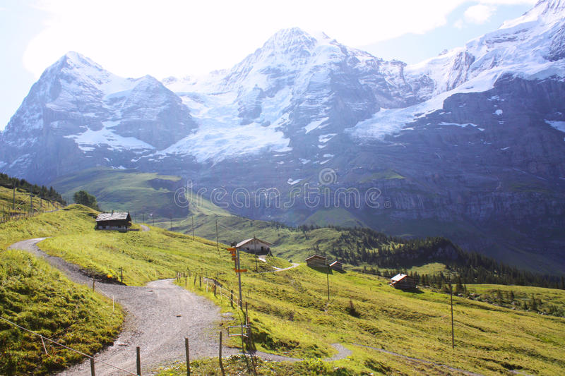 Download Swiss alps stock image. Image of houses, greenery, trees - 20136601