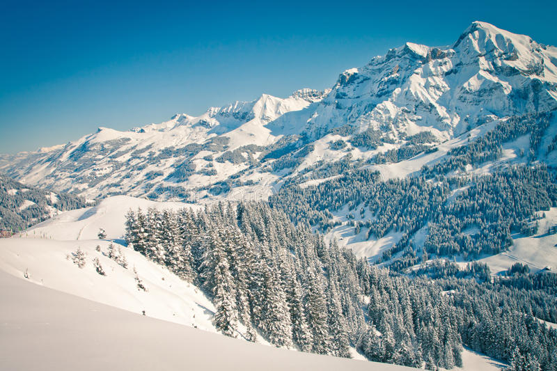 Download Swiss Alps stock image. Image of pass, holiday, forest - 25230939