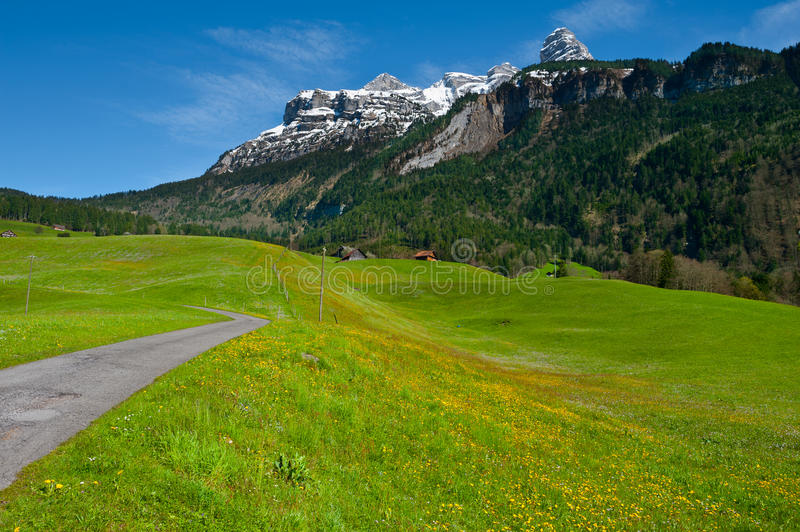 Download Swiss Alps stock image. Image of grass, ground, high - 26987455
