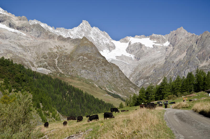Download Swiss Alps Stock Photo - Image: 27405120