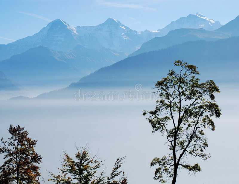 Swiss Alps Fog stock photography