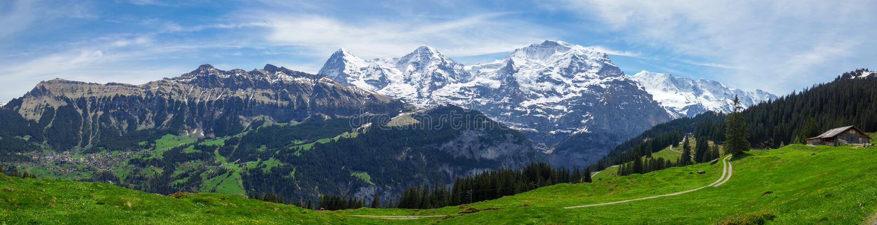 Swiss Alps panorama royalty free stock image