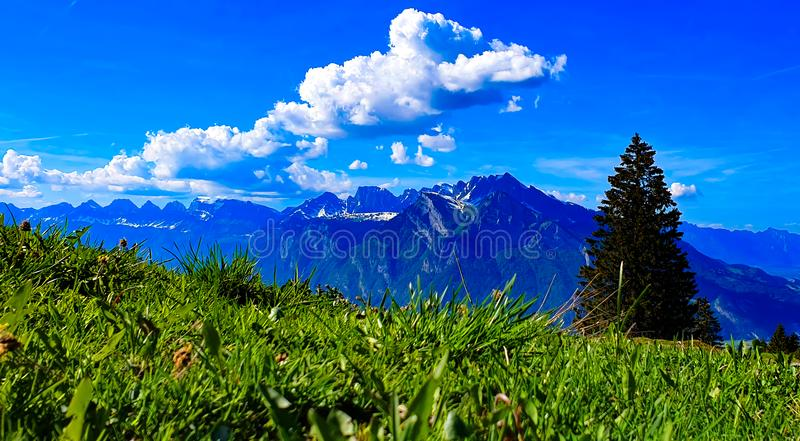 Swiss alps panorama mountain view royalty free stock images
