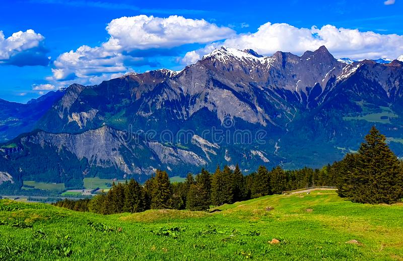 Swiss alps panorama mountain view royalty free stock image