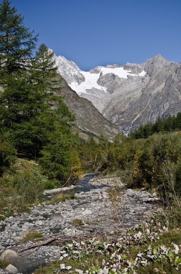 Swiss Alps views stock image
