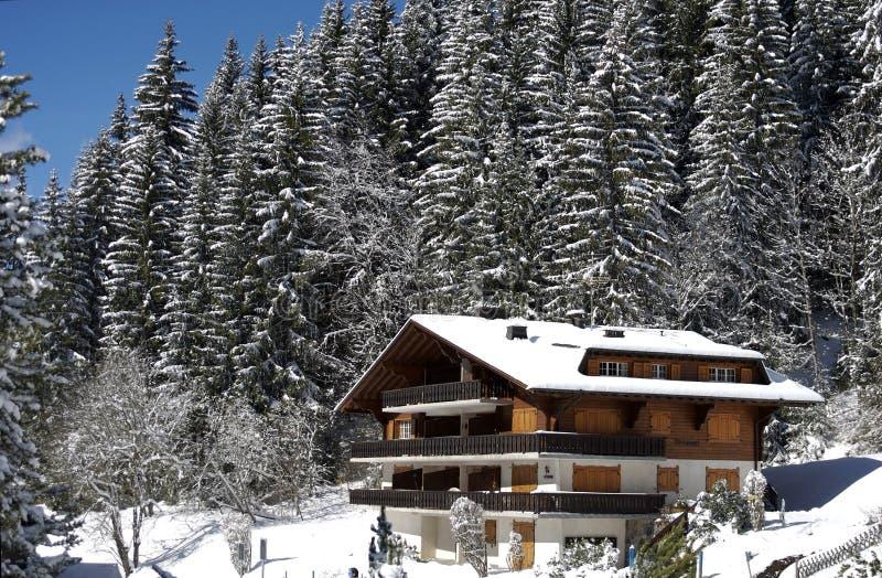 Swiss chalet in winter stock image