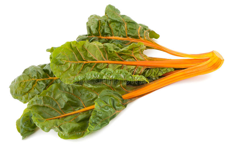Swiss chard. Fresh swiss chard isolated on white background stock image