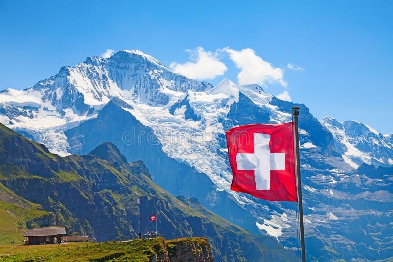 Swiss flag. On the top of Mannlichen (Jungfrau region, Bern, Switzerland royalty free stock photos