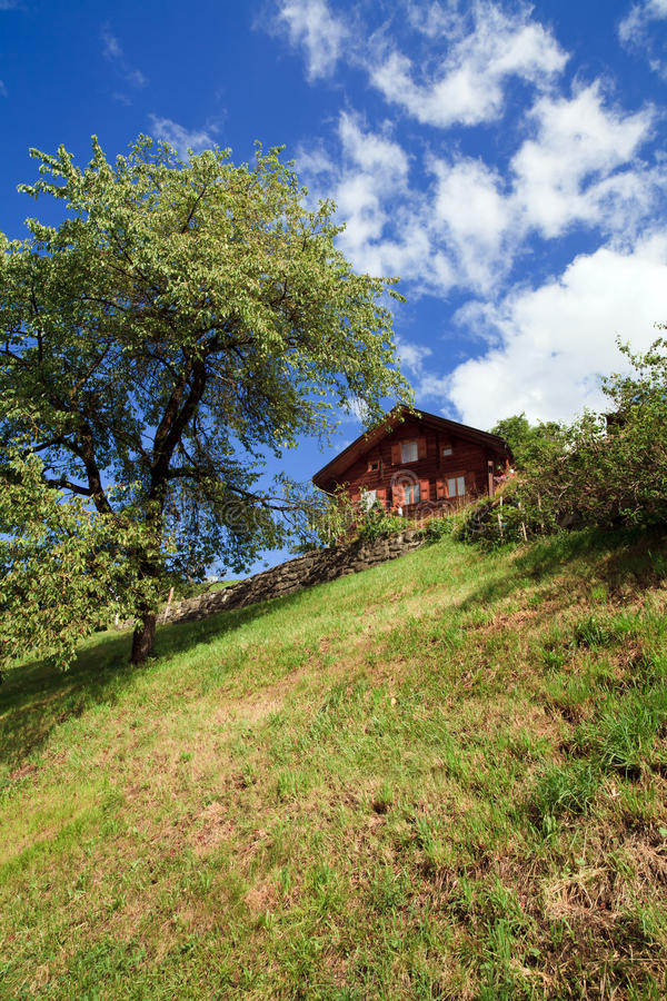 Download Swiss Mountain Home stock photo. Image of grass, field - 16068682