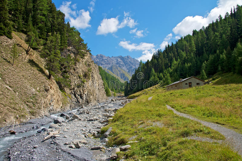 Swiss National Park royalty free stock photography