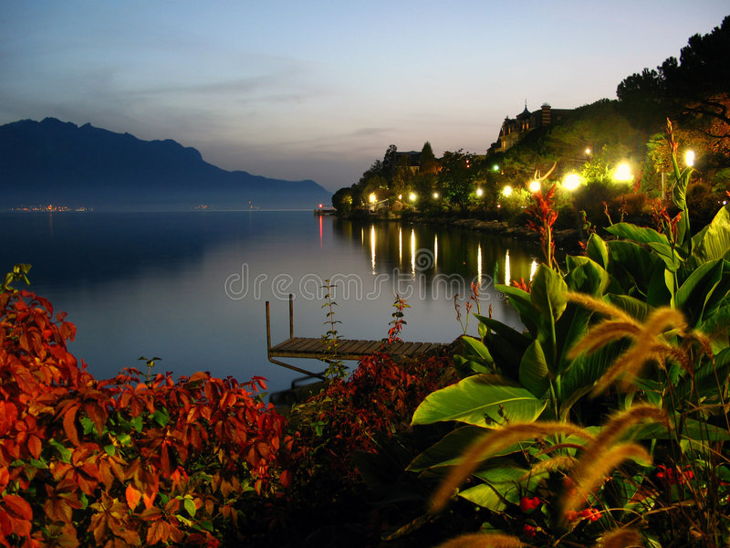 Swiss riviera 02, Montreux, Switzerland. Exotic plants along the lakeside promenade on the Swiss Riviera in Montreux, Switzerland. Late summer evening; myst on stock images