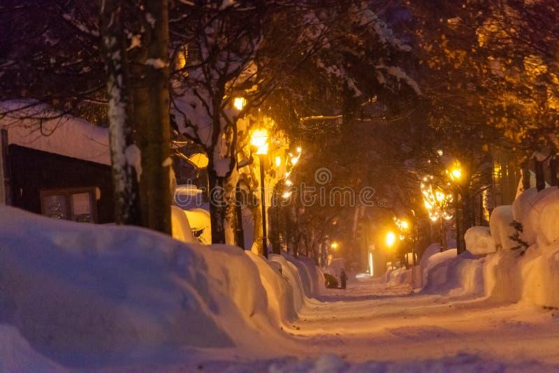 Swiss Winter Night a cold winter stock photo
