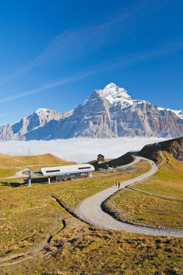 Download Switzerland stock photo. Image of grindelwald, europe - 24098322